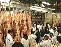 市場 中央 東京 都 卸売 市場 食肉