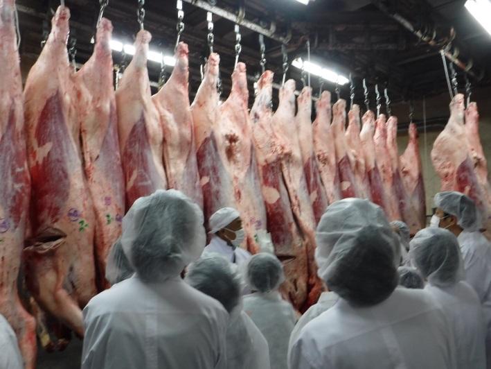食肉市場 お肉の親子教室「市場...
