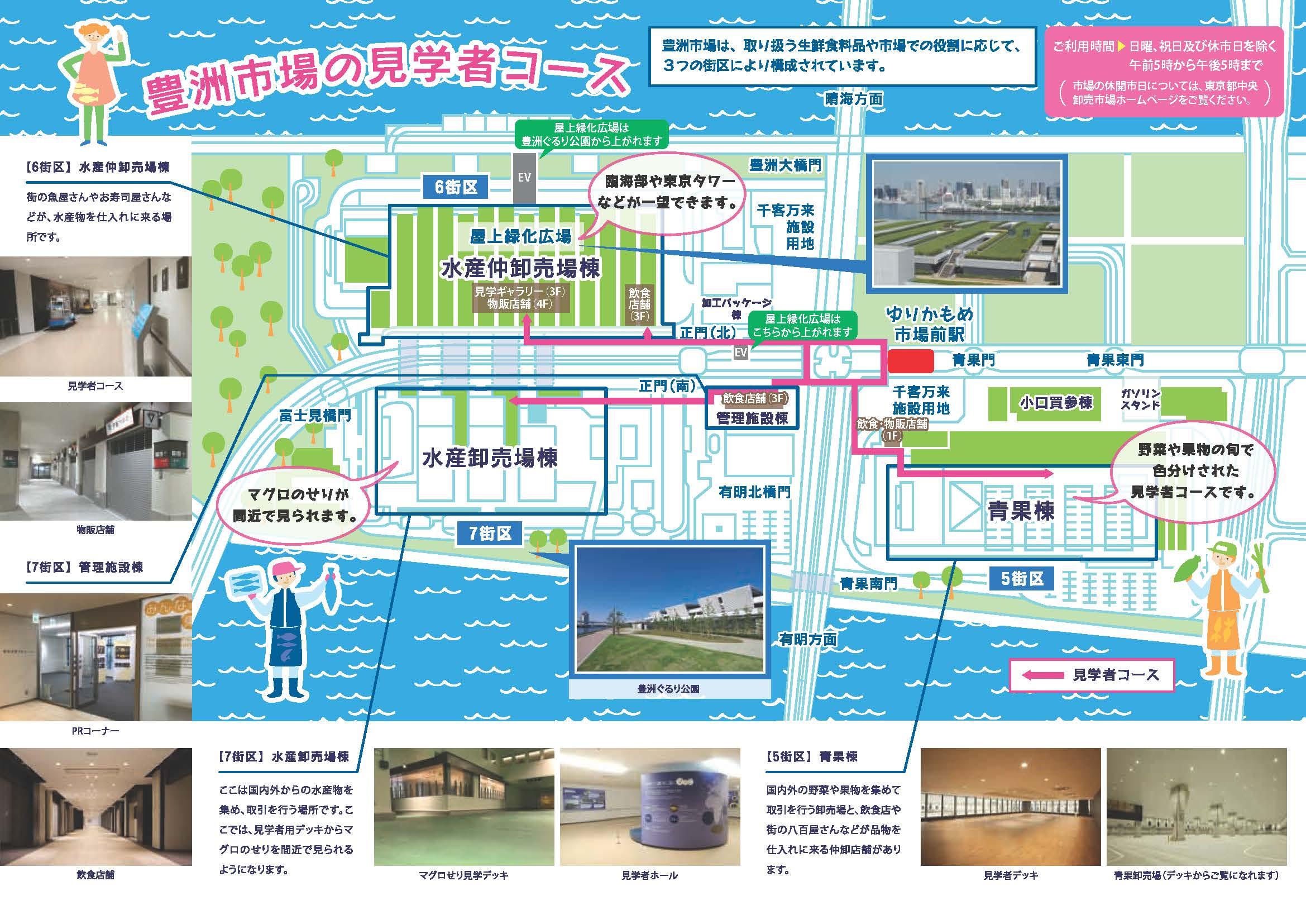 a9f4a5cfafd3 豊洲市場の見学について|東京都中央卸売市場